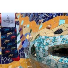 Lagarto lagarto #parkguell #trencadis #fullcolor @socksandco #calcetinesviajeros #ventaonline #portesgratis